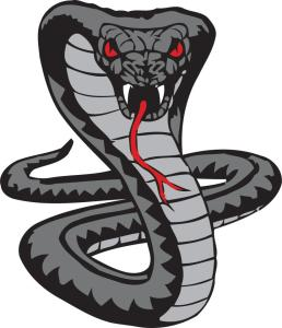 Vegas Cobras